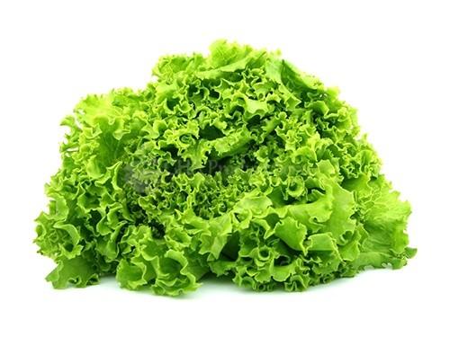 Curly salad